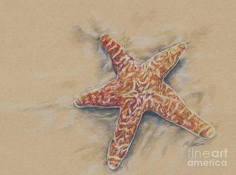 Starfish study by Meagan  Visser