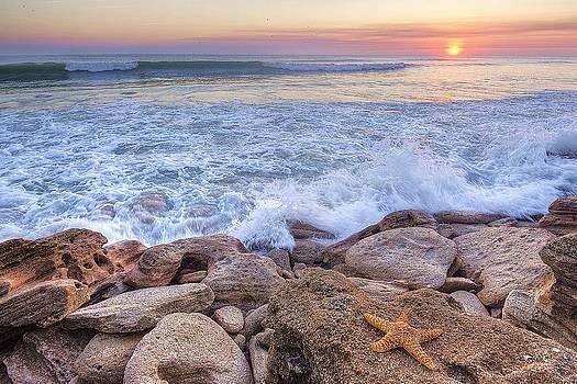 Starfish Sunrise on the Rocks by DM Photography- Dan Mongosa