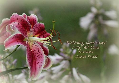 Rosanne Jordan - Stargazer Birthday Wishes