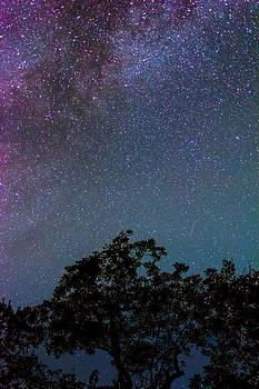 David Morefield - Stars in Texas