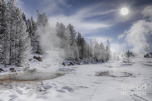 Winter Landscape- Steaming Pools on a Sunny Day by Feryal Faye Berber