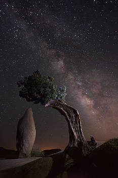 Stellar Convergence by Tuan Le
