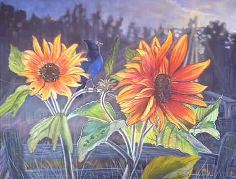 Stellar Sunflower by Rayna DeHoog