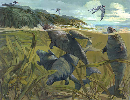 Steller's Sea Cow by ACE Coinage painting by Michael Rothman