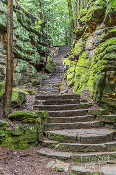 Steps by Patrick Shupert