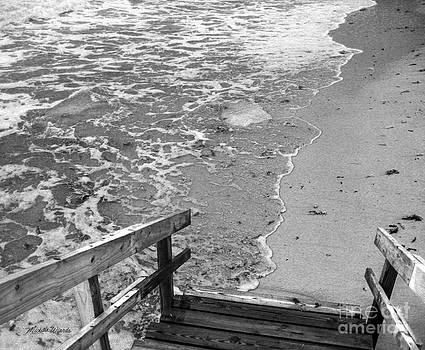 Michelle Wiarda - Steps to the Sea
