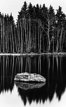 Sticks And Stones by Matti Ollikainen