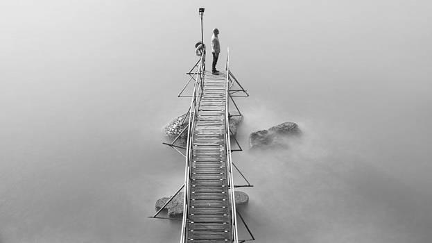 Still  by Kam Chuen Dung