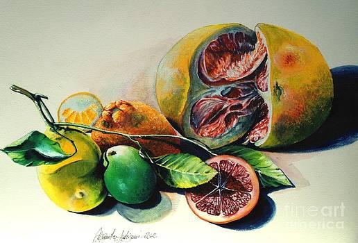 Still Life of Citrus by Alessandra Andrisani