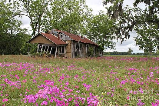 Still Life with Old House by Theresa Willingham
