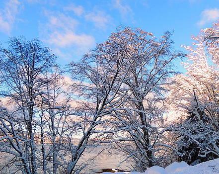 Still Of Winter by Karen Horn