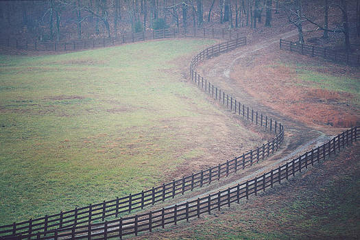 Still Pasture by Kathleen Stevens Moore