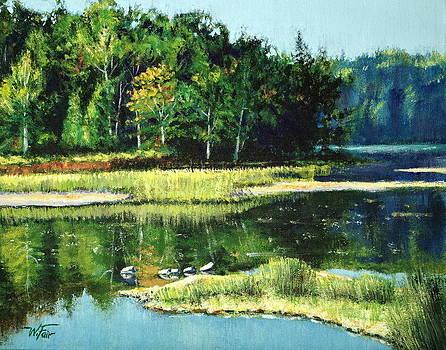 Still Waters by Wayne Fair