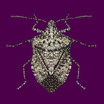 Stink Bug Bedazzled by R  Allen Swezey
