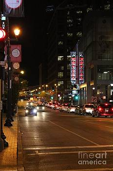 St.Louie at Night by Theresa Willingham