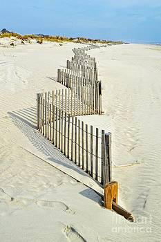 Stone Harbor Beach by Joseph J Stevens