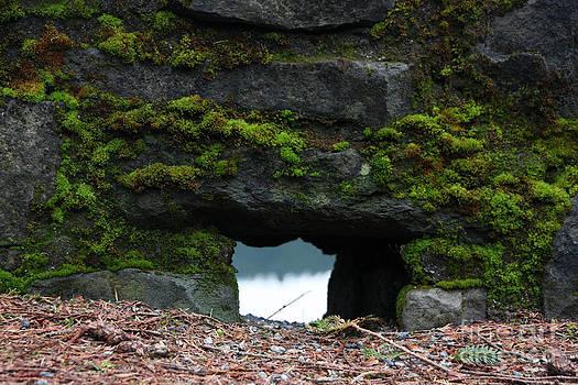 Stone Hole by Stephanie Cooke