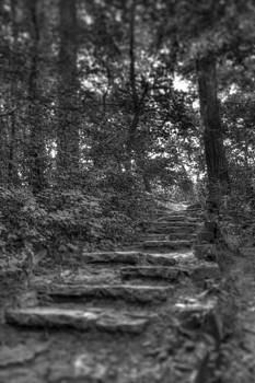 Stone Steps by Ed Cilley
