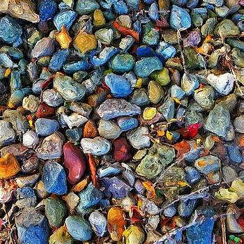 Stones In The Fall by Sandy MacGowan