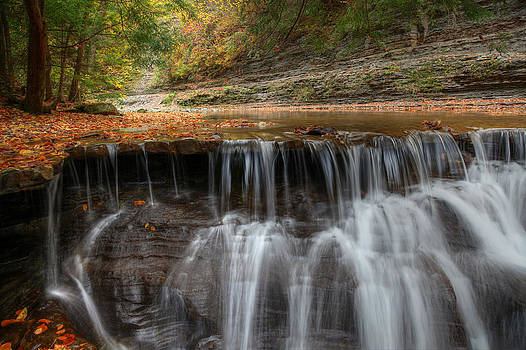 Stony Brook Falls by Terry Cervi