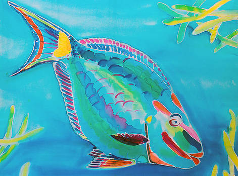 Stoplight Parrot Fish by Kelly     ZumBerge