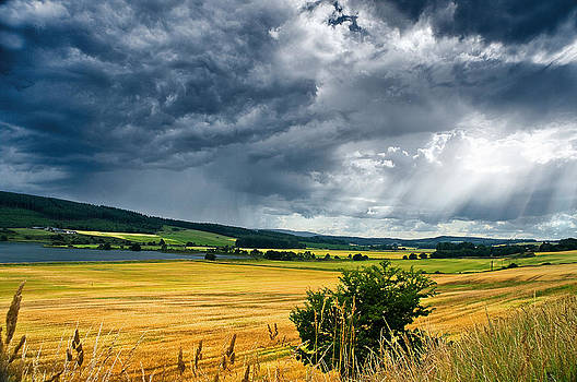 Storm and Sunbeams by Jacqi Elmslie