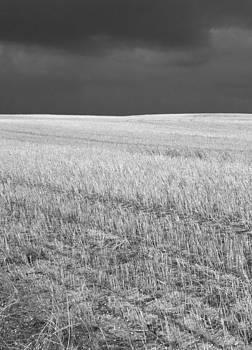 Storm on the stubble by Gordon  Grimwade