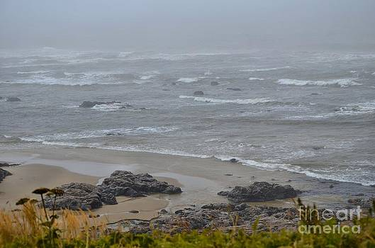 Stormy Beach by Shauna Fackler