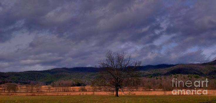Stormy Cades Cove by Janice Spivey