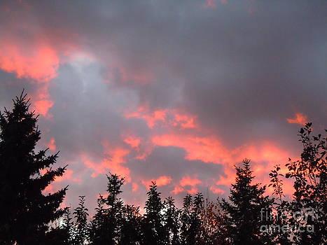 Stormy Sky by Sonya Chalmers