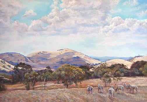 Strathbogie Landscape by Lynda Robinson