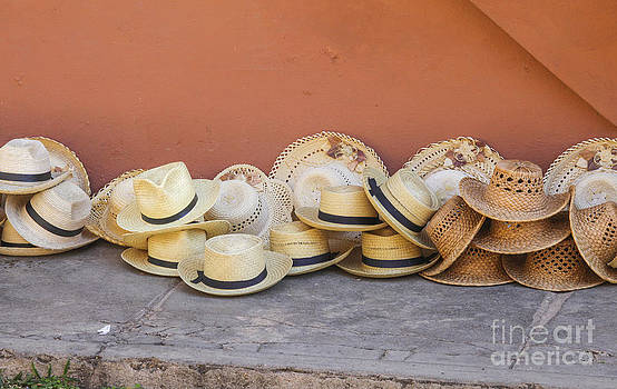 Patricia Hofmeester - Straw hats