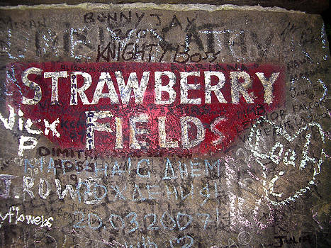 Strawberry Fields by Enrique  Coloma