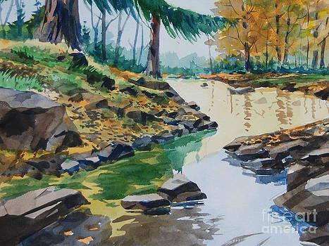 Stream at Honey Run by Bill Dinkins