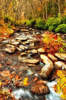 Dan Carmichael - Stream into Fall - Great Smokey Mountains