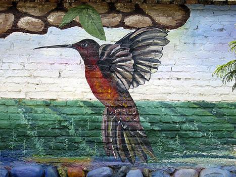 Kurt Van Wagner - Street Art Ecuador.2