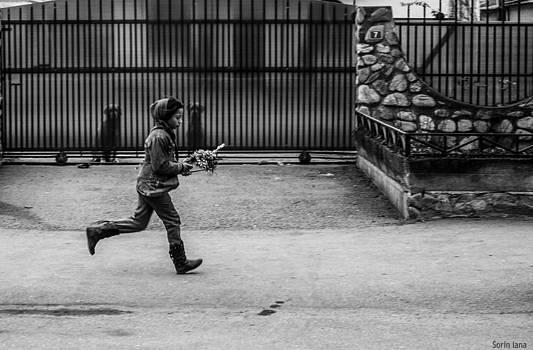 Run On The Street by Sorin Iana