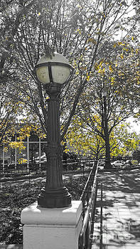Street Lamp by Michelle Hastings