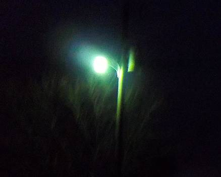 Street Light by Rosalie Klidies