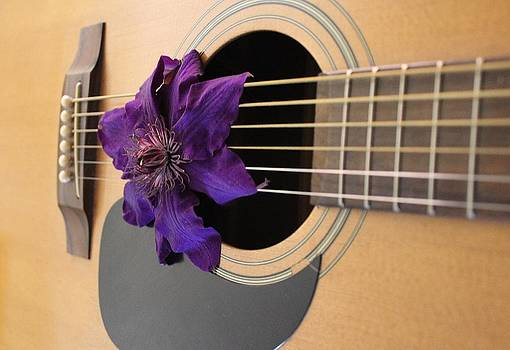 Strings And Blooms by Janet Wagstaff