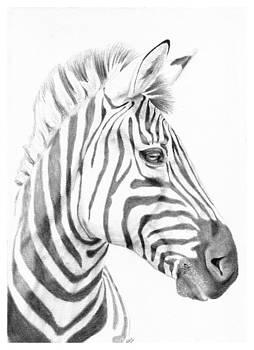 Stripes by Liz Oliver