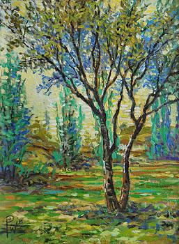 Study of a Tree by Henry David Potwin