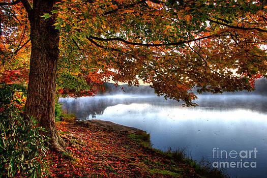 Dan Carmichael - Stunning Autumn Morning in the Blue Ridge