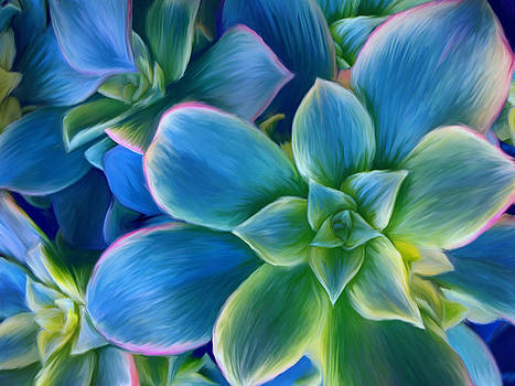 Succulent Blue on Green by Sharon Beth