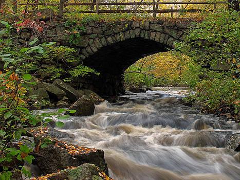 Juergen Roth - Sudbury River