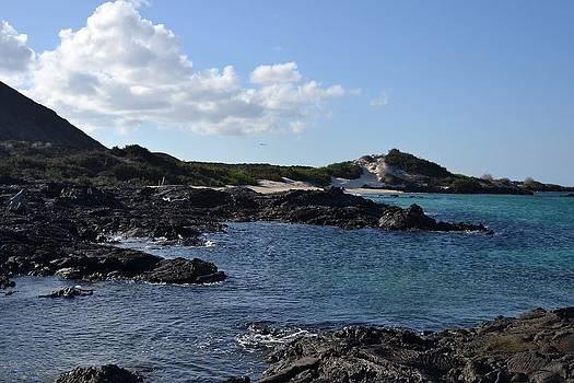 Sullivan Bay by Jennifer Kelly