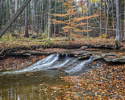 Jack R Perry - Sulphur Springs Falls