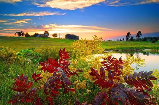 Randall Branham - Sumac Golden Rod Farm and Pond