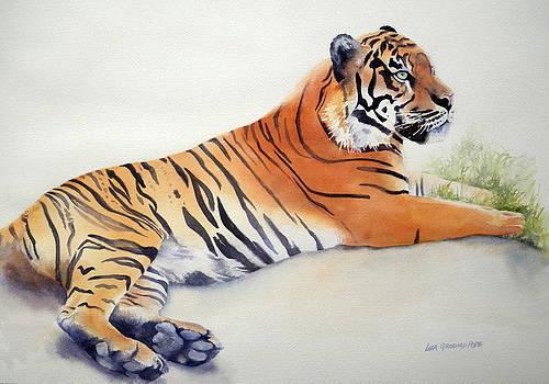 Sumatran Tiger by Lisa Pope