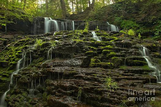 Adam Jewell - Summer At Mohawk Falls